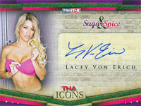 2010 TNA Icons Trading Card Set